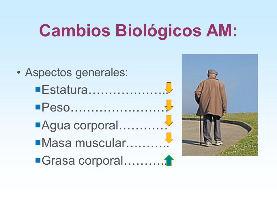 Cambios Biológicos AM: