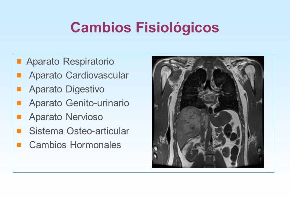 Cambios Fisiológicos Aparato Respiratorio Aparato Cardiovascular