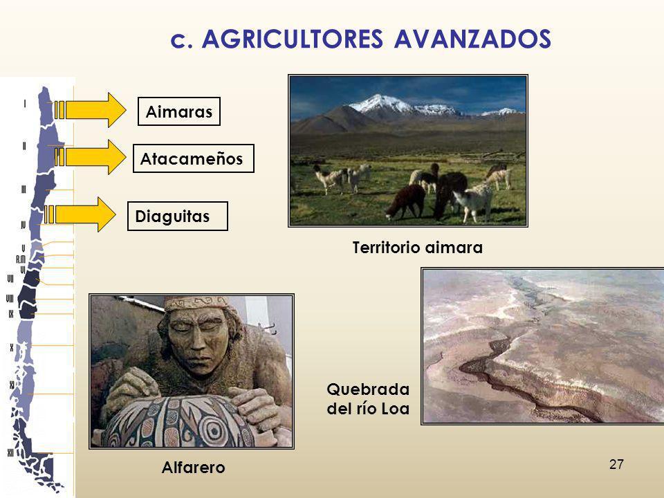 c. AGRICULTORES AVANZADOS
