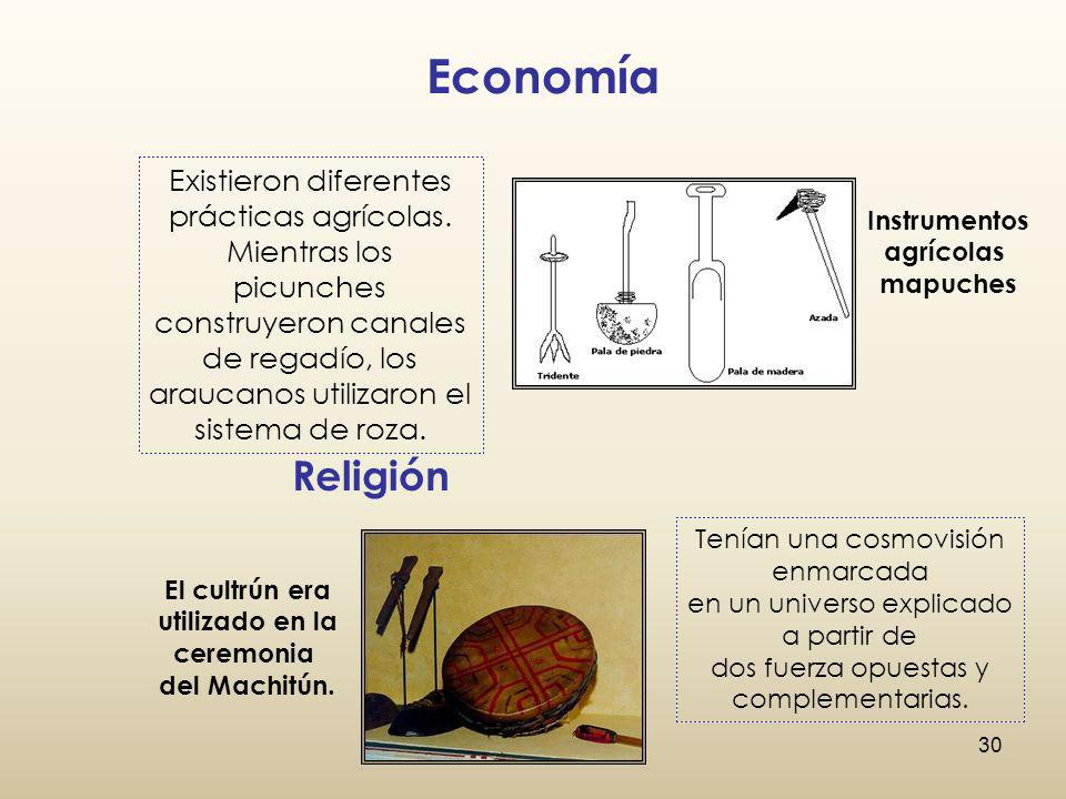 Economía Existieron diferentes prácticas agrícolas. Mientras los picunches.