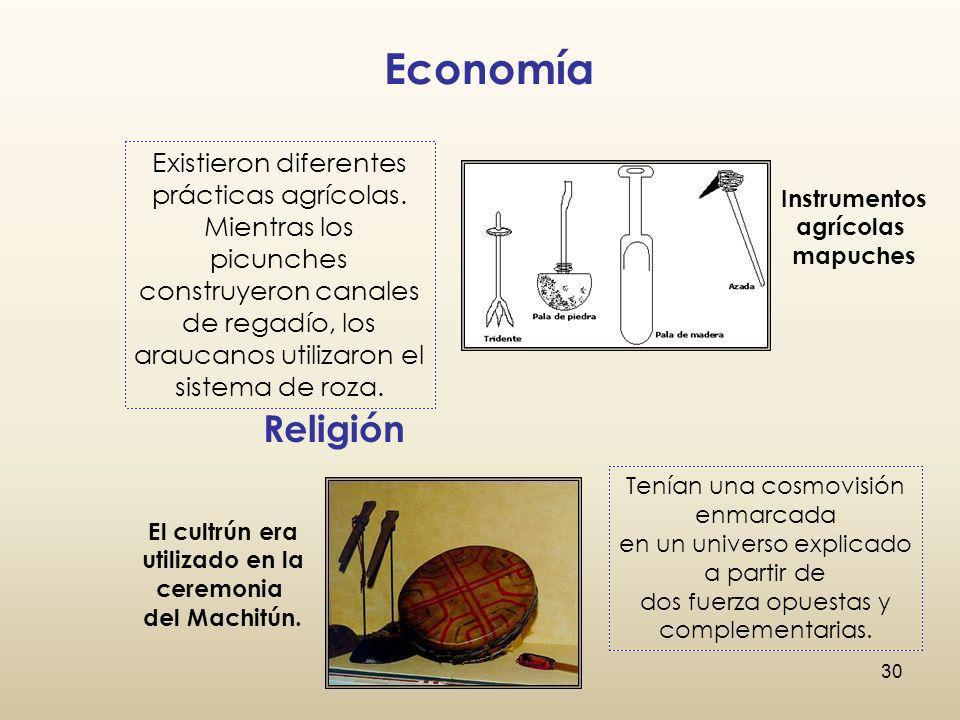EconomíaExistieron diferentes prácticas agrícolas. Mientras los picunches.