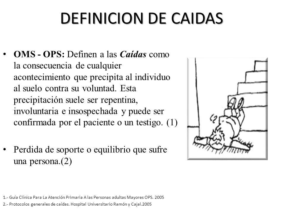 DEFINICION DE CAIDAS