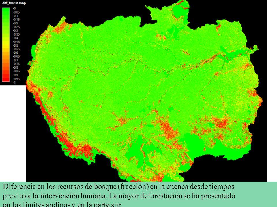 Diferencia en los recursos de bosque (fracción) en la cuenca desde tiempos