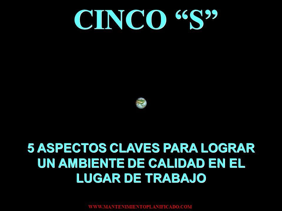 CINCO S 5 ASPECTOS CLAVES PARA LOGRAR UN AMBIENTE DE CALIDAD EN EL LUGAR DE TRABAJO