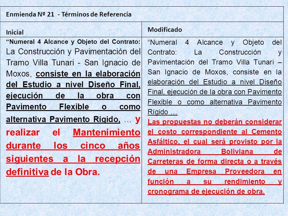 Enmienda Nº 21 - Términos de Referencia Inicial Modificado