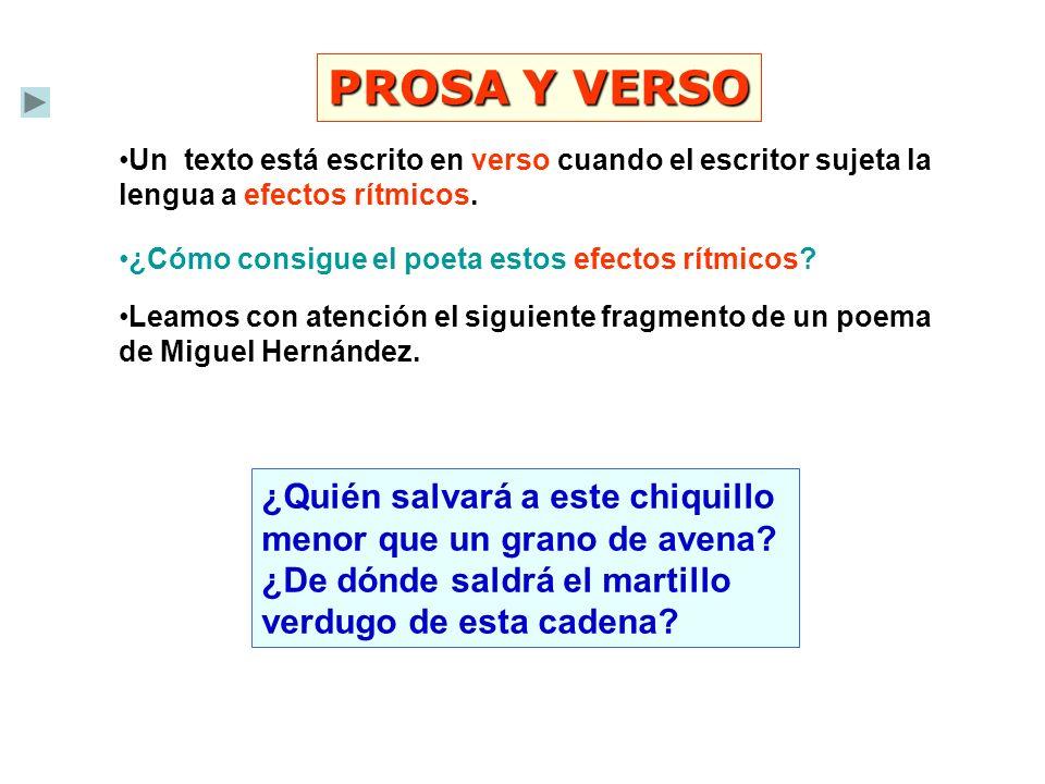 PROSA Y VERSO Un texto está escrito en verso cuando el escritor sujeta la lengua a efectos rítmicos.