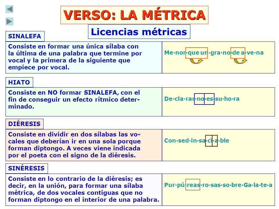 VERSO: LA MÉTRICA Licencias métricas SINALEFA