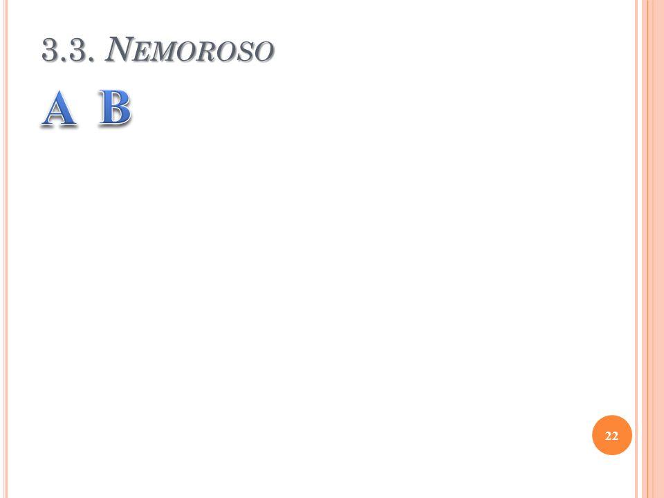 3.3. Nemoroso A B
