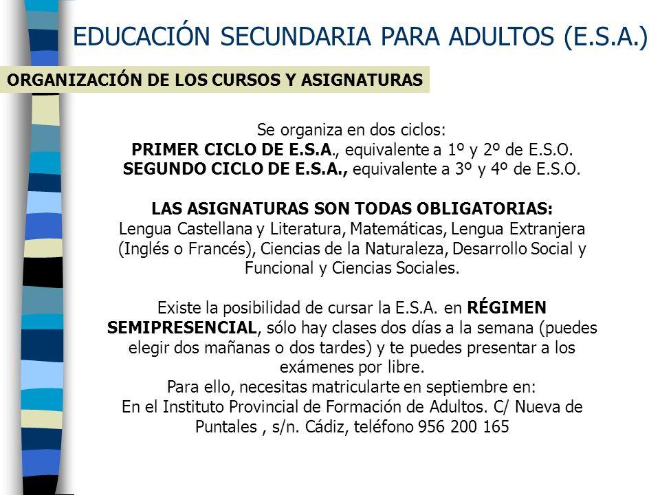 EDUCACIÓN SECUNDARIA PARA ADULTOS (E.S.A.)