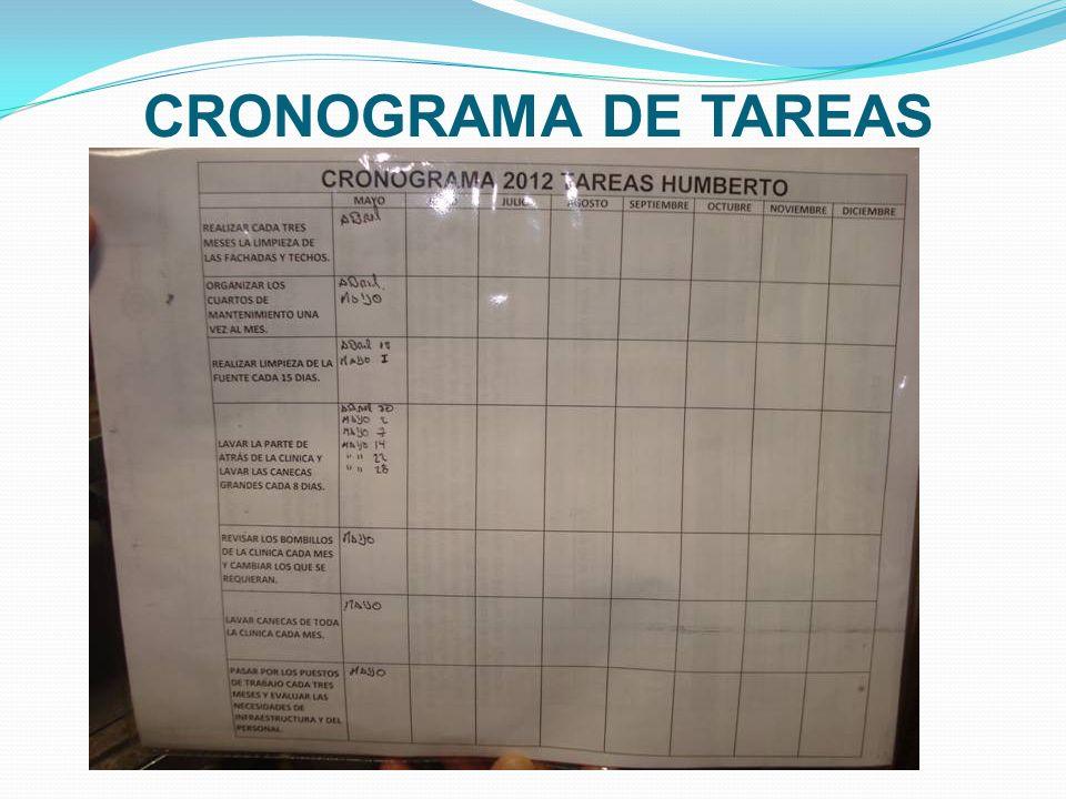 CRONOGRAMA DE TAREAS