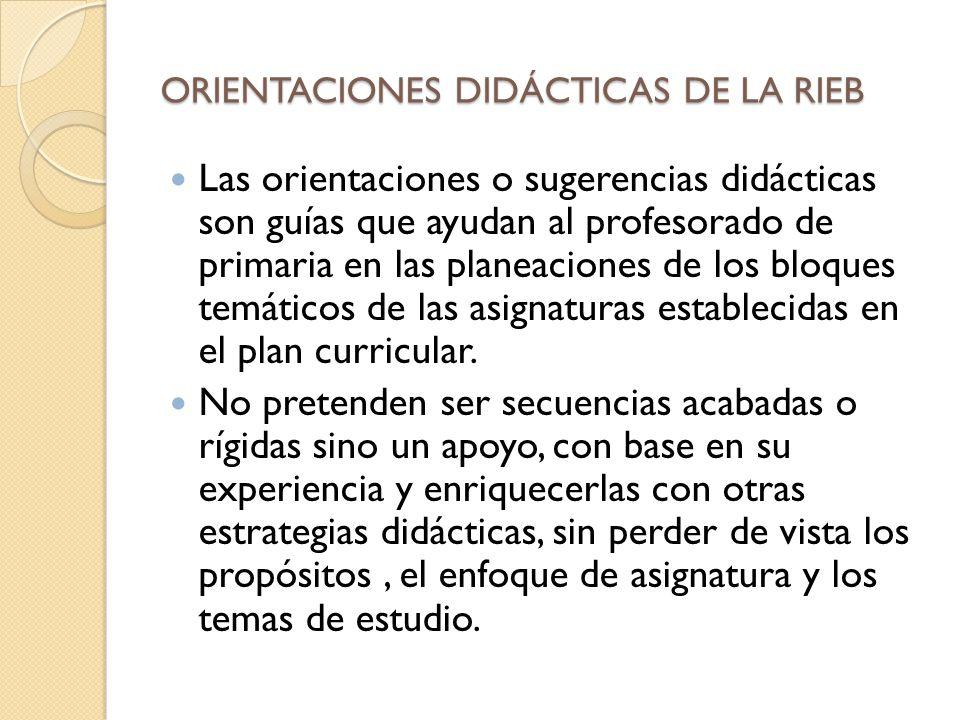 ORIENTACIONES DIDÁCTICAS DE LA RIEB
