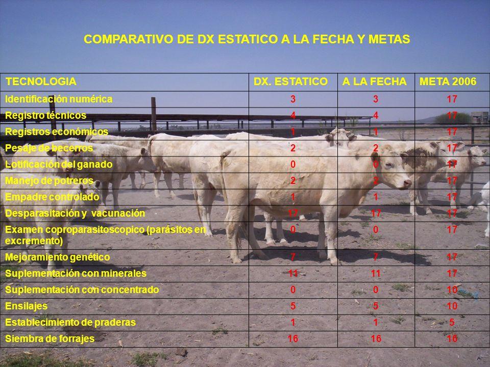 COMPARATIVO DE DX ESTATICO A LA FECHA Y METAS