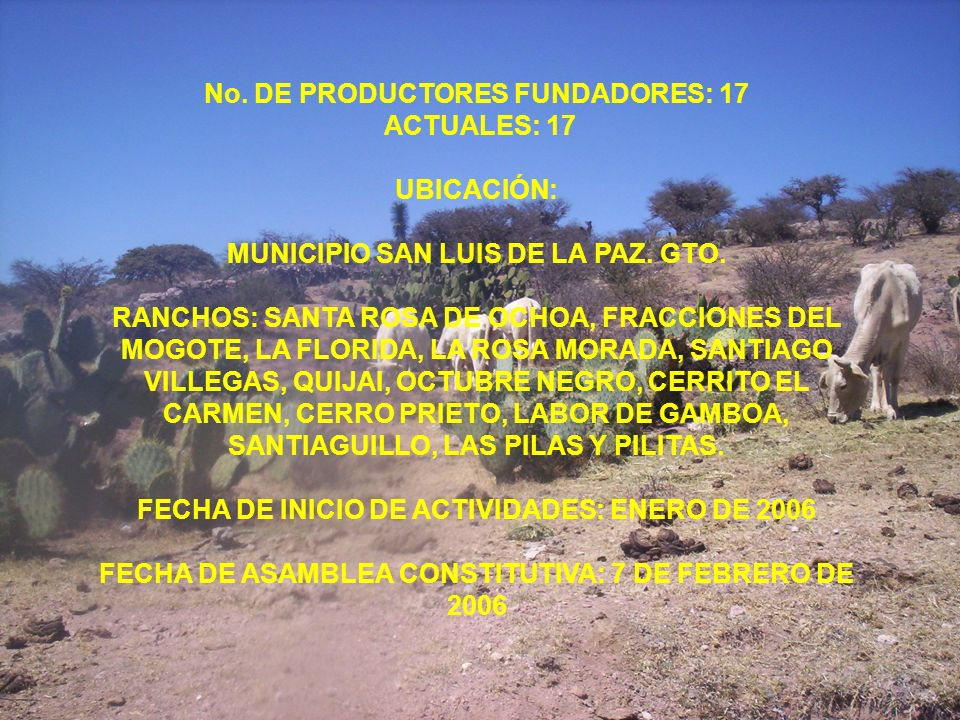 No. DE PRODUCTORES FUNDADORES: 17 ACTUALES: 17 UBICACIÓN: