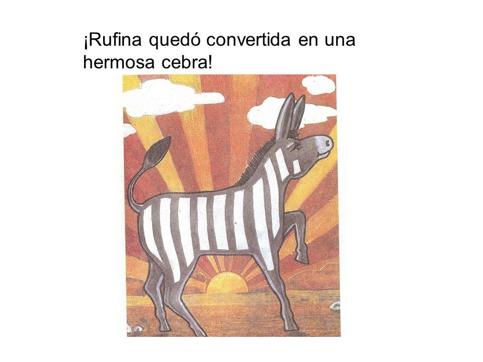 ¡Rufina quedó convertida en una hermosa cebra!