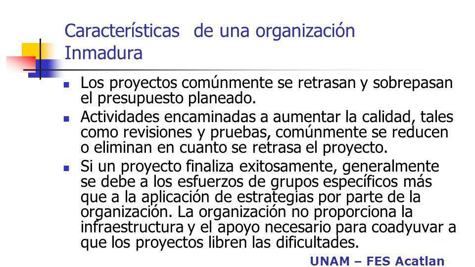 Características de una organización Inmadura