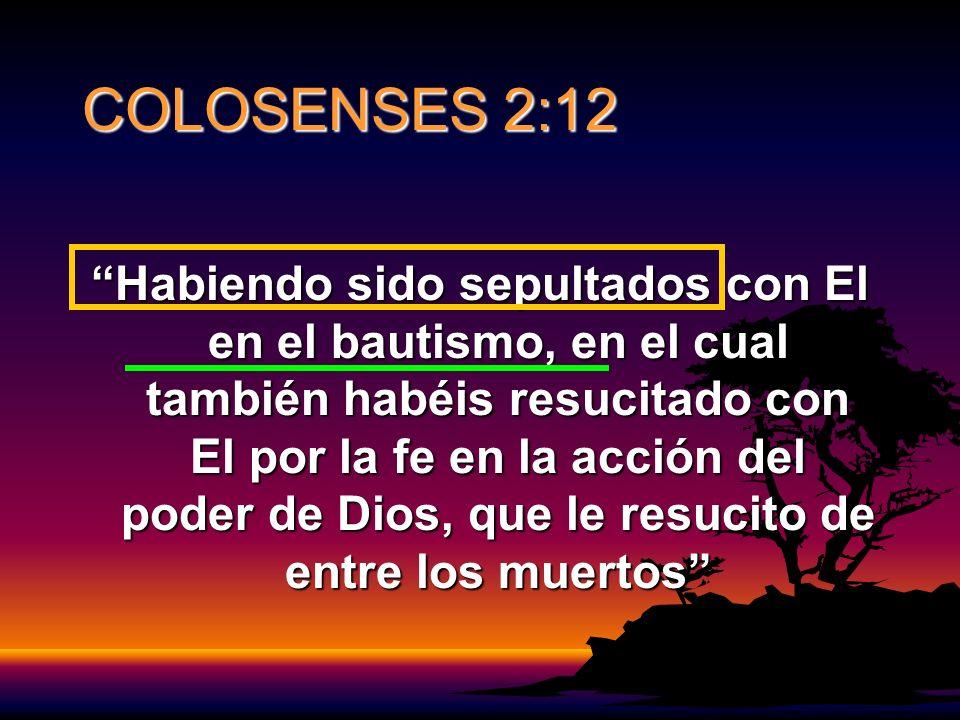 COLOSENSES 2:12