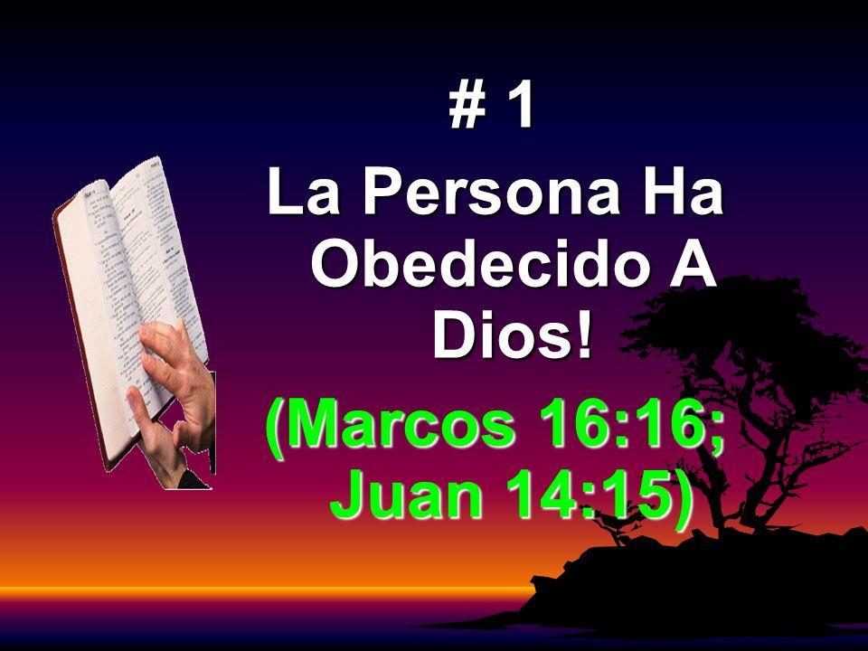 La Persona Ha Obedecido A Dios!