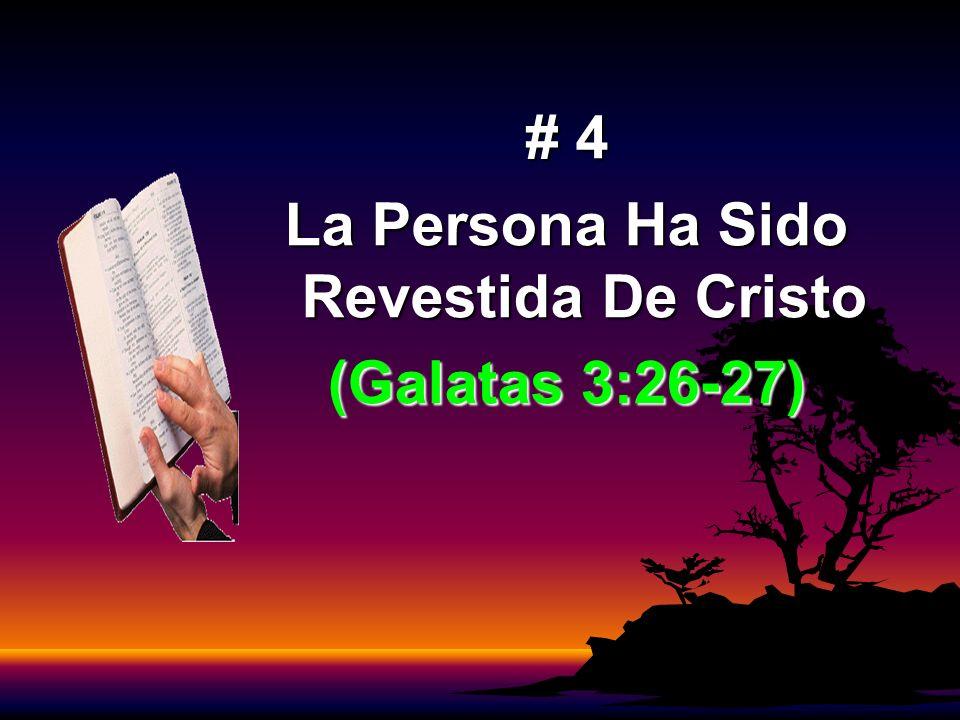 La Persona Ha Sido Revestida De Cristo