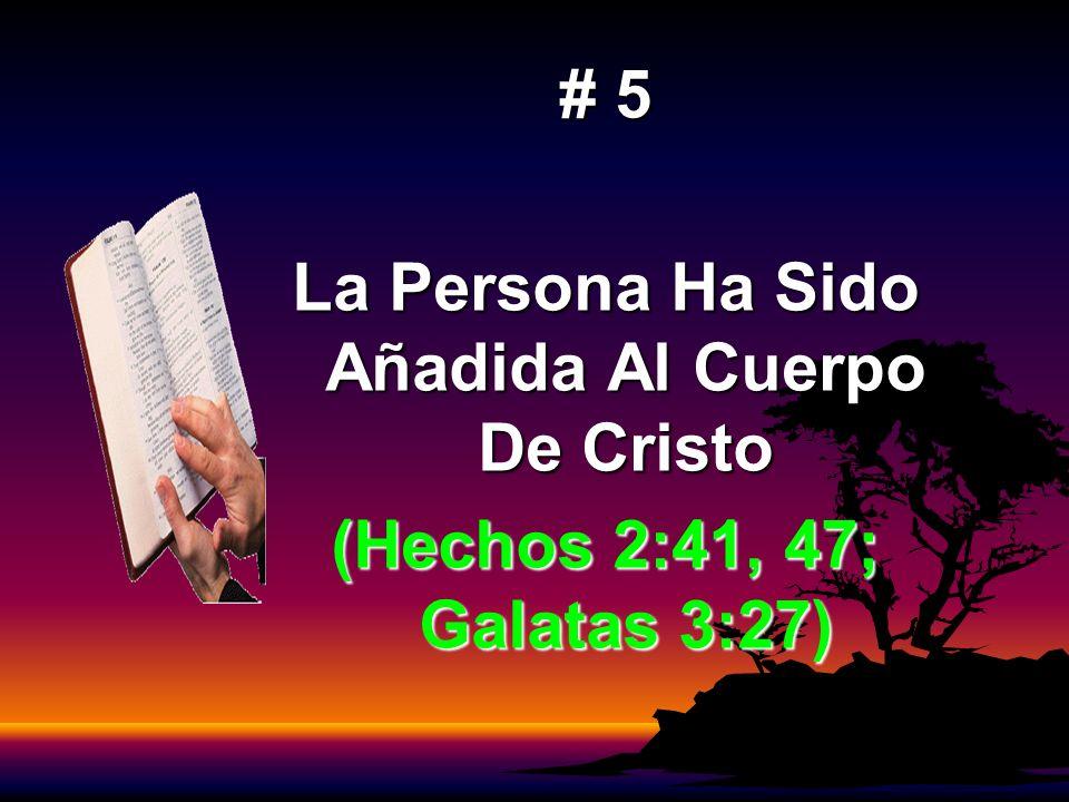 La Persona Ha Sido Añadida Al Cuerpo De Cristo