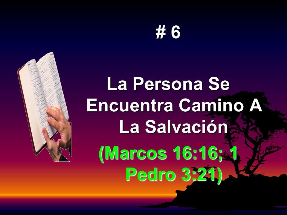 La Persona Se Encuentra Camino A La Salvación