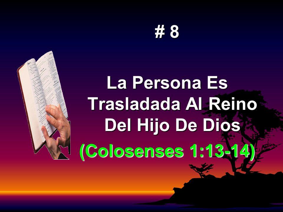 La Persona Es Trasladada Al Reino Del Hijo De Dios