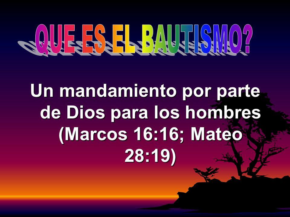QUE ES EL BAUTISMO Un mandamiento por parte de Dios para los hombres (Marcos 16:16; Mateo 28:19)