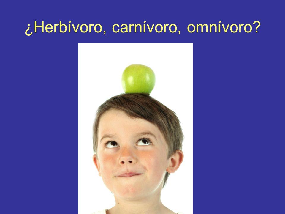 ¿Herbívoro, carnívoro, omnívoro
