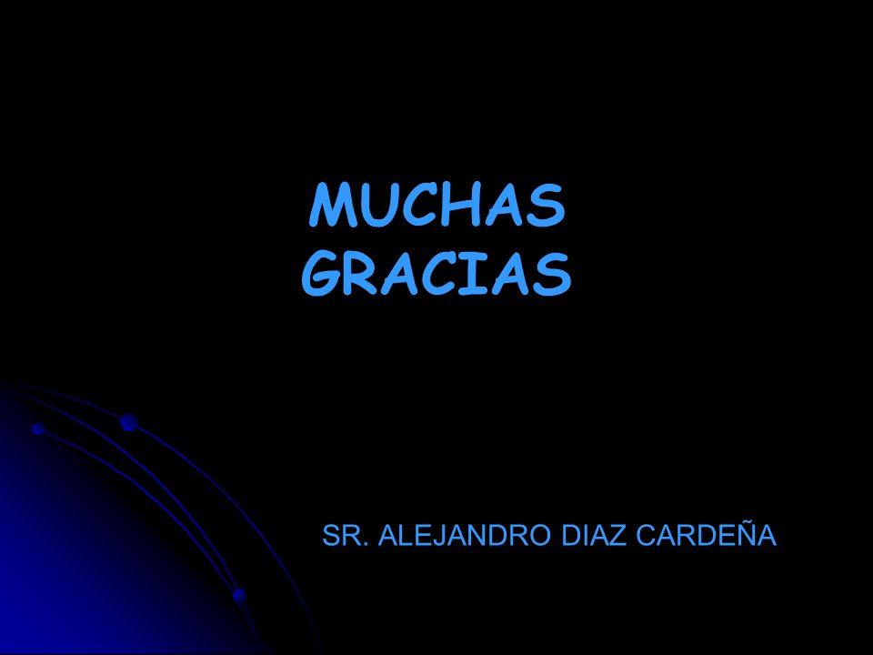 SR. ALEJANDRO DIAZ CARDEÑA