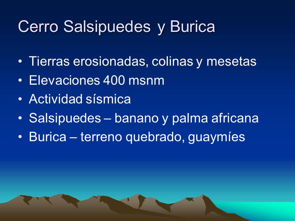Cerro Salsipuedes y Burica