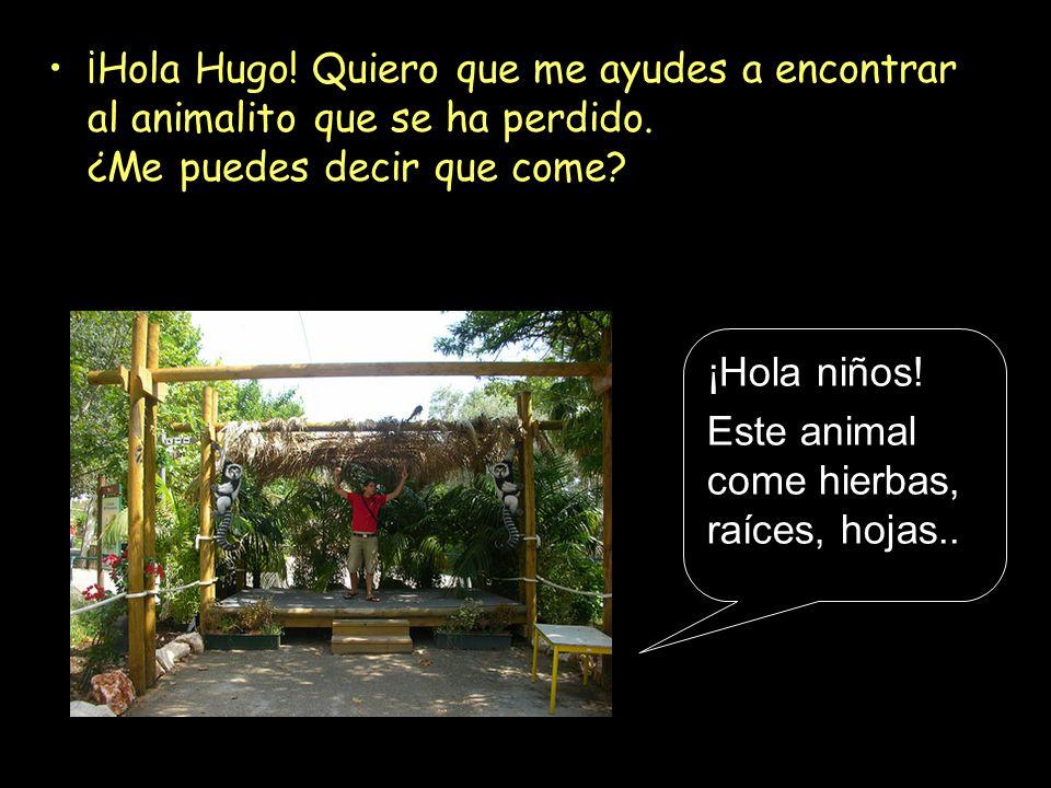 ¡Hola Hugo! Quiero que me ayudes a encontrar al animalito que se ha perdido. ¿Me puedes decir que come