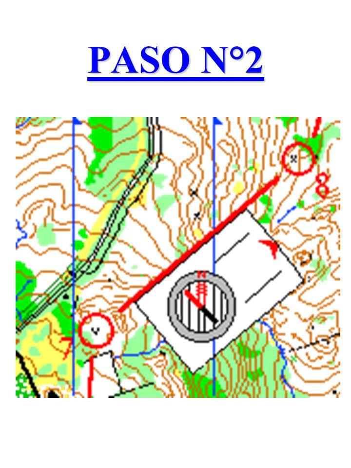 PASO N°2