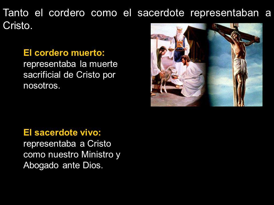 Tanto el cordero como el sacerdote representaban a Cristo.