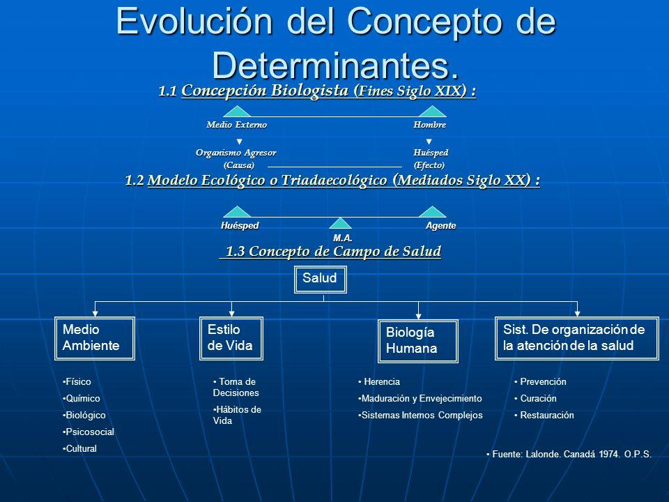 Evolución del Concepto de Determinantes.