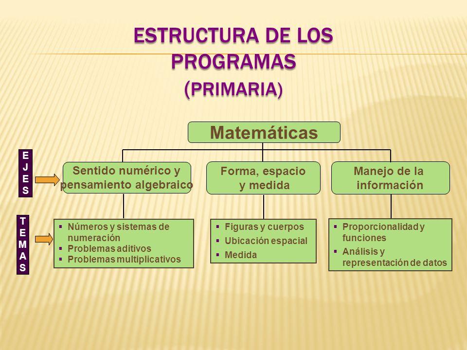 Estructura de los programas (Primaria)