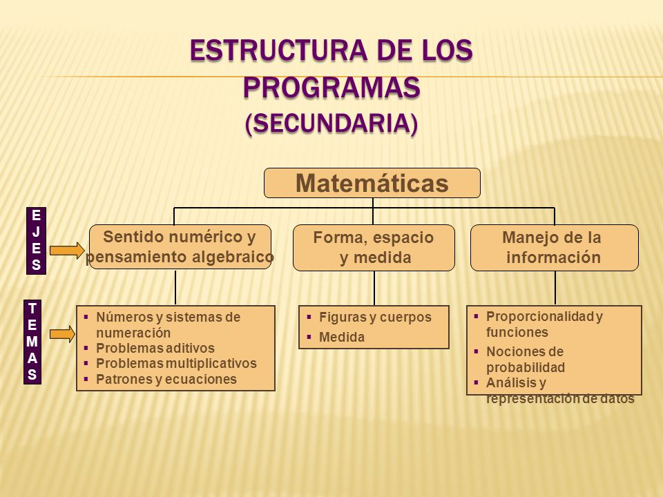 Estructura de los programas (Secundaria)