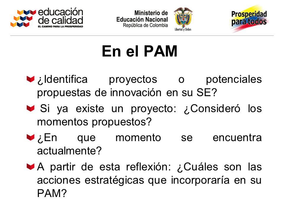 En el PAM ¿Identifica proyectos o potenciales propuestas de innovación en su SE Si ya existe un proyecto: ¿Consideró los momentos propuestos