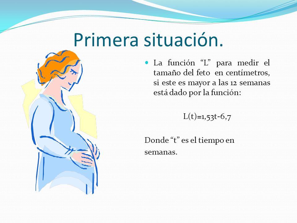 Primera situación. La función L para medir el tamaño del feto en centímetros, si este es mayor a las 12 semanas está dado por la función: