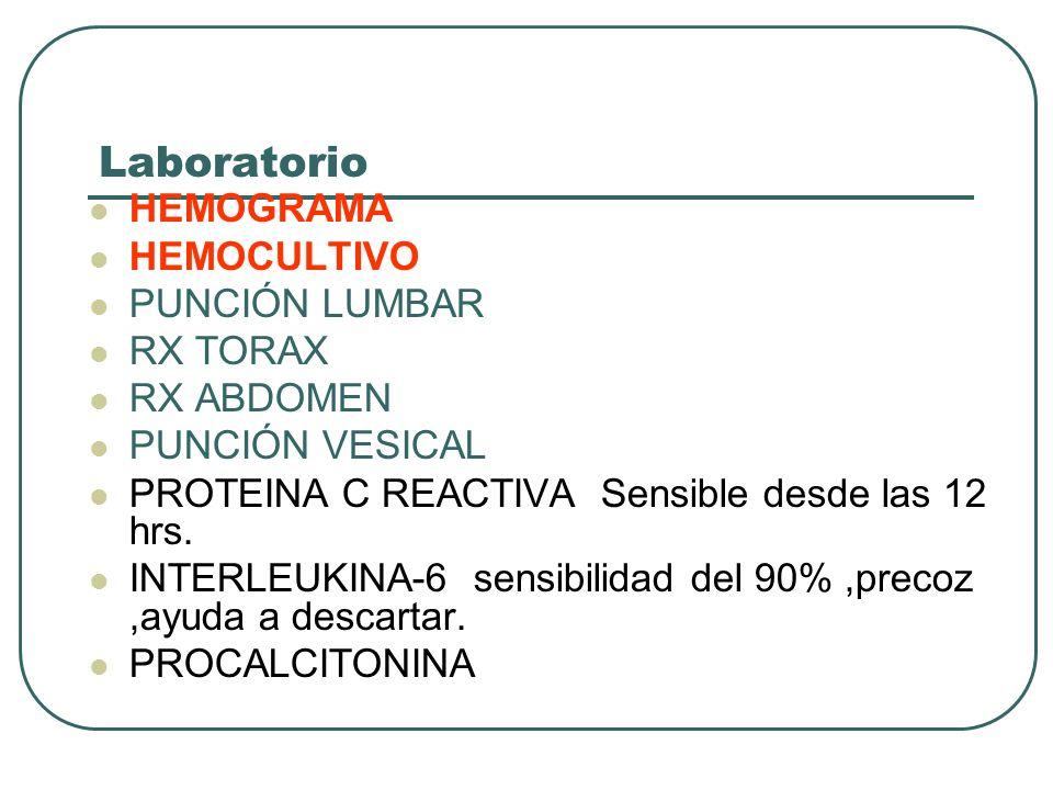 Laboratorio HEMOGRAMA HEMOCULTIVO PUNCIÓN LUMBAR RX TORAX RX ABDOMEN