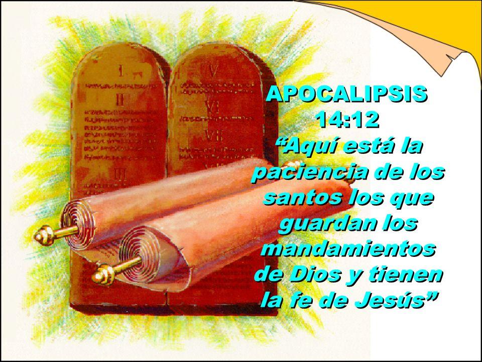APOCALIPSIS 14:12 Aquí está la paciencia de los santos los que guardan los mandamientos de Dios y tienen la fe de Jesús
