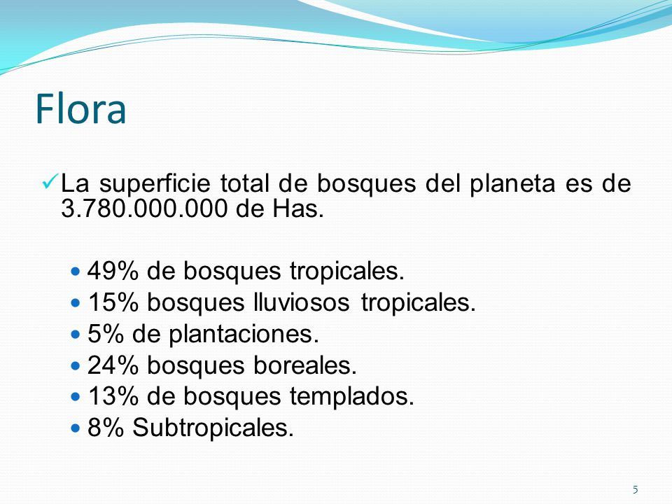 Flora La superficie total de bosques del planeta es de de Has. 49% de bosques tropicales.