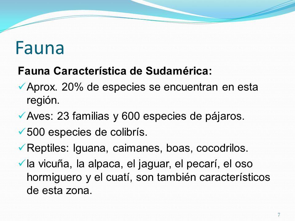 Fauna Fauna Característica de Sudamérica: