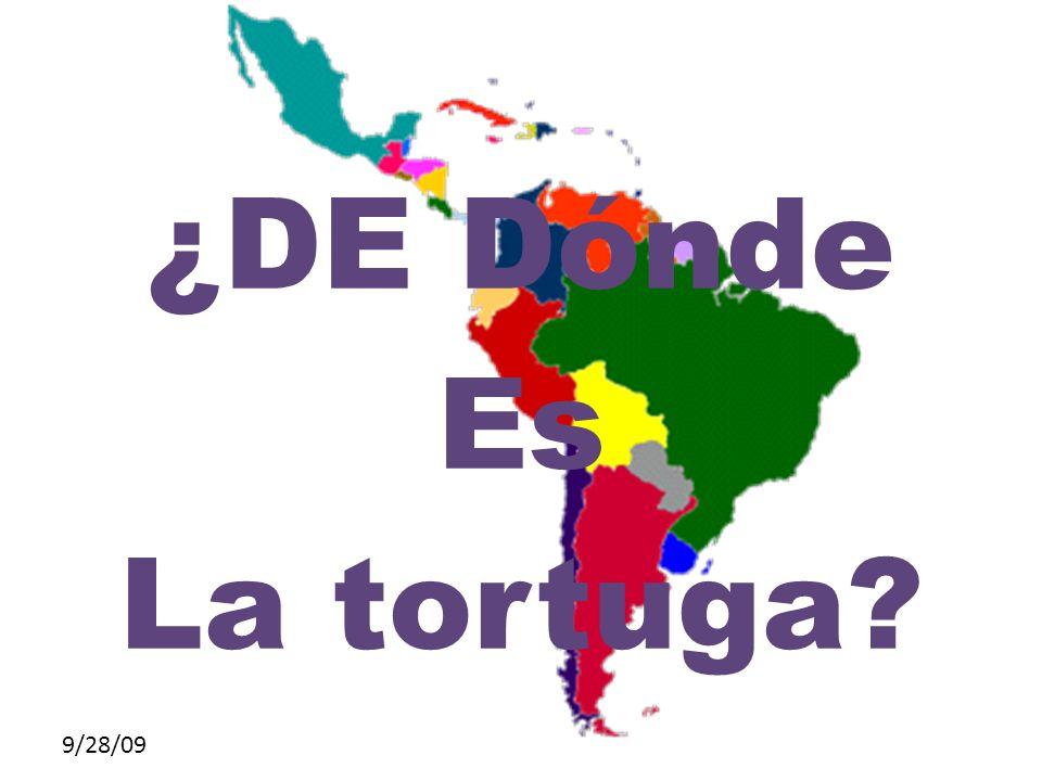 ¿DE Dónde Es La tortuga 9/28/09