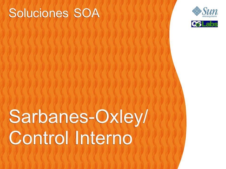 Soluciones SOA Sarbanes-Oxley/ Control Interno