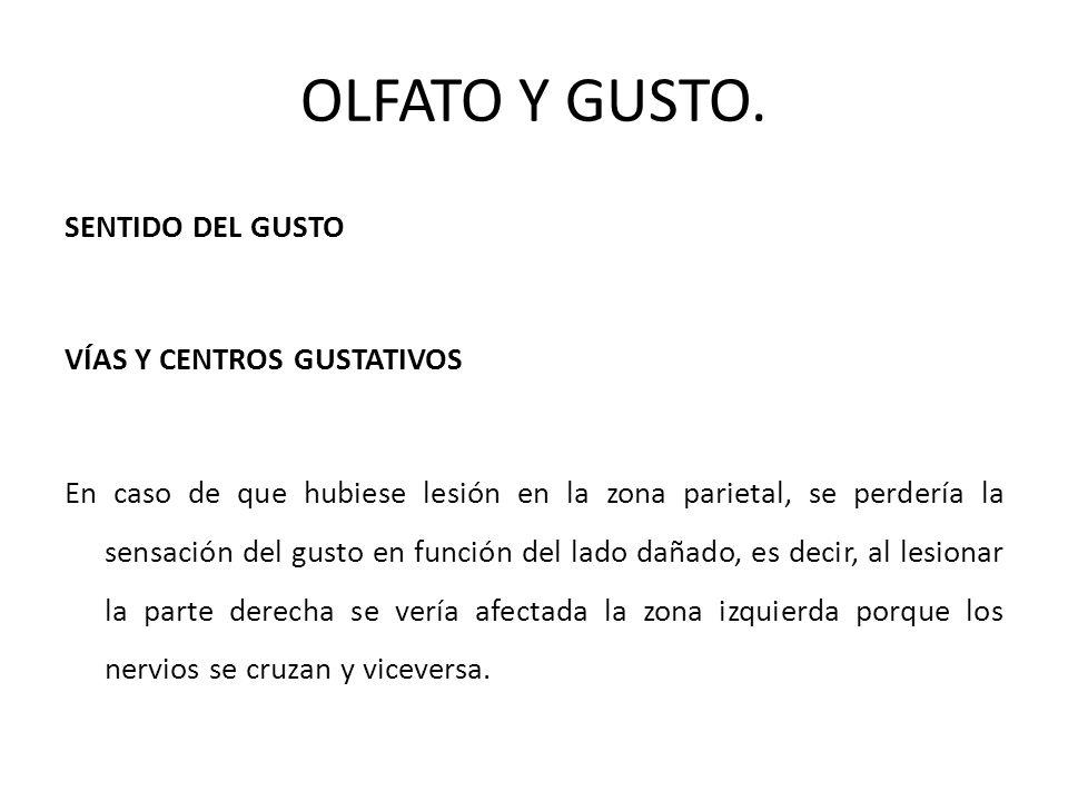 OLFATO Y GUSTO.