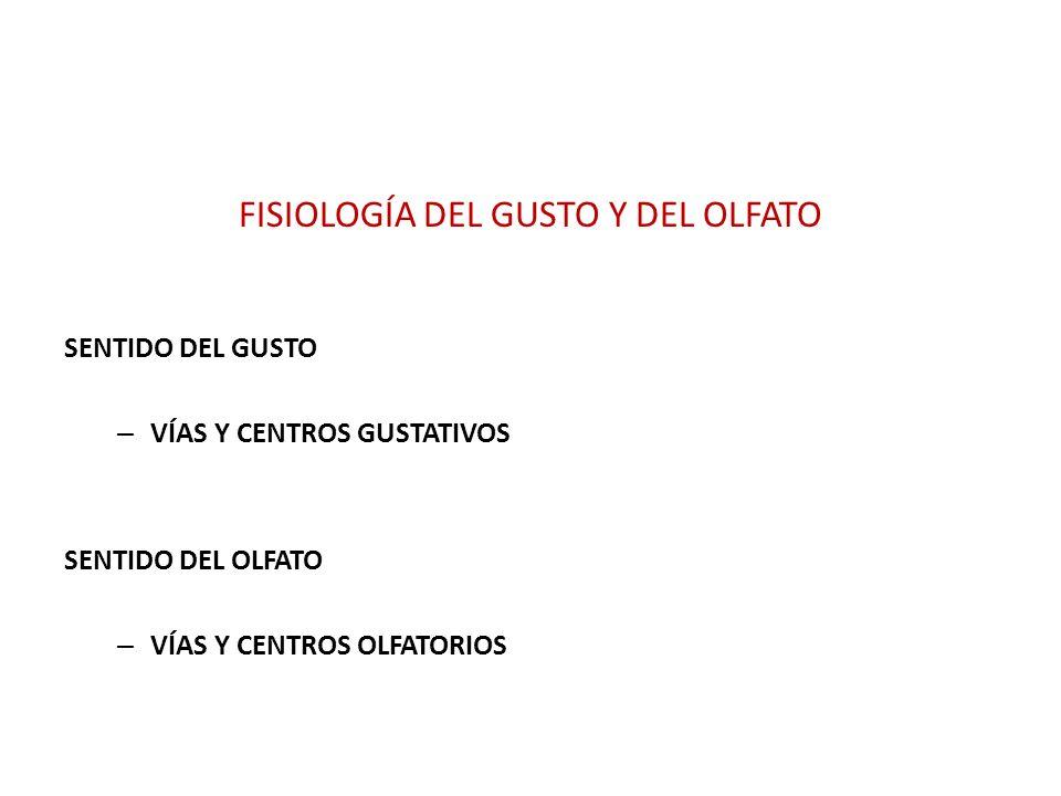 FISIOLOGÍA DEL GUSTO Y DEL OLFATO