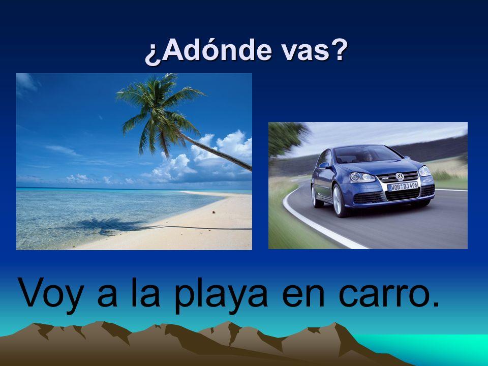¿Adónde vas Voy a la playa en carro.