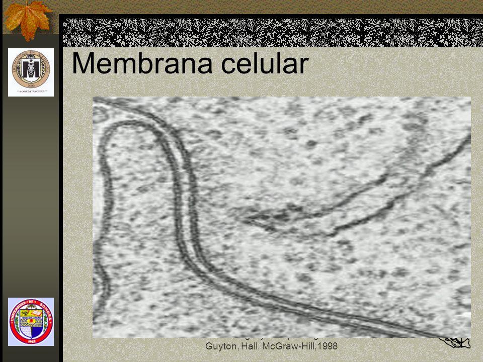 Membrana celular Fisiología y Fisiopatología