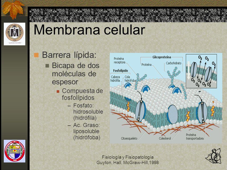 Membrana celular Barrera lípida: Bicapa de dos moléculas de espesor