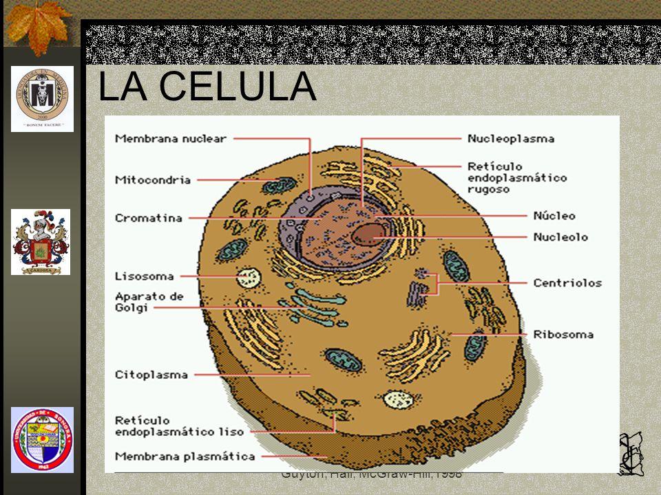 LA CELULA Fisiología y Fisiopatología Guyton, Hall, McGraw-Hill,1998