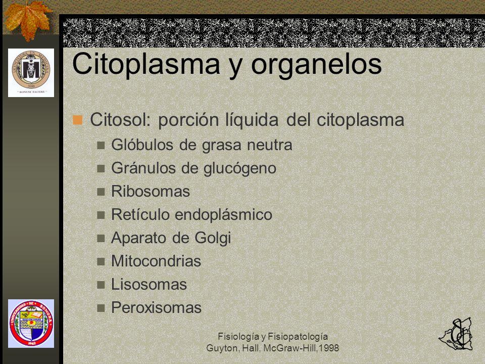 Citoplasma y organelos